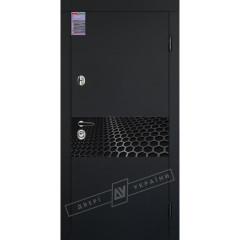 Двері дерев'яні фарбовані Rodeo від Євгена Ткаченко