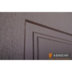 Вхідні двері Rodos Steel Premium PRZ 001