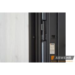 Двері Страж в будинок Proof Standart Mottura Vespa Twin сірий лісовий