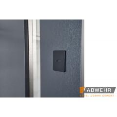 Двері Страж в будинок Proof Standart  1.5 Party С Double