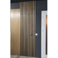 Двері вхідні Термопласт Thermo Steel  Standart 21-05