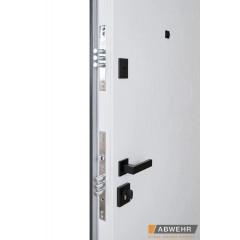 Вхідні двері фасадні протизламні LP 005 STEEL-LAMPRE-PANEL